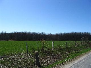 PART 1WELLINGTONST, Ramara Township, Ontario, Canada