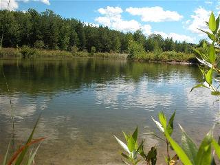 2935 grass lake line, Severn Township Ontario, Canada
