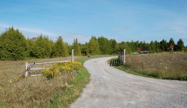 740 County Road 4, Douro-dummer Township Ontario