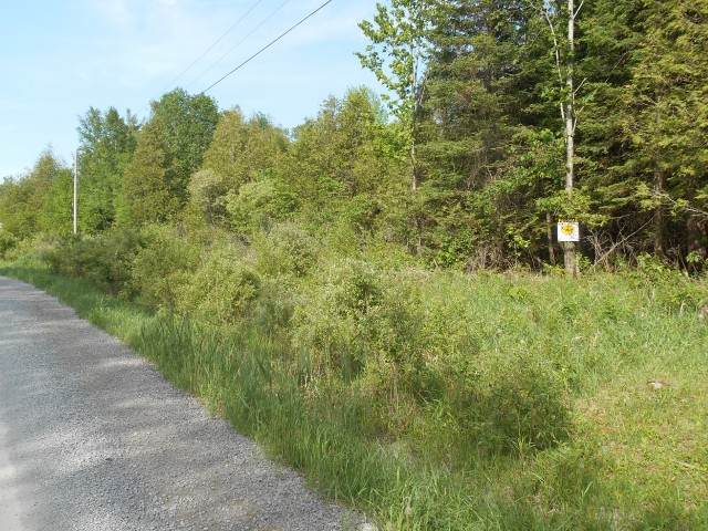 pt lot 15 rock road, Douro-Dummer Township Ontario, Canada