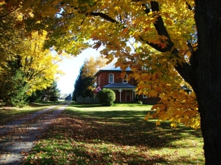 Bailieboro Ontario, Canada