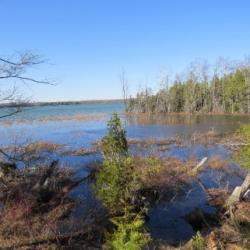 Part Lot 16 Concession 17, Wiarton Ontario