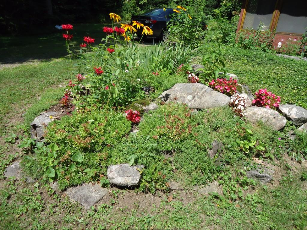 4382 Aspdin Rd, Utterson Ontario