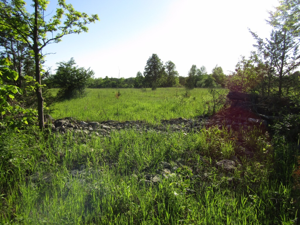 pt lot 25 pt 2 phillips road (south lot other, Shannonville Ontario, Canada
