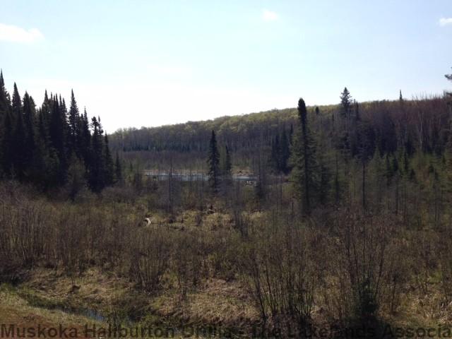 tower road & mountain view road, Sundridge Ontario, Canada