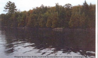 BIG CARIBOU ISLAND LOT 1, Port Loring Ontario, Canada Located on Caribou Lake