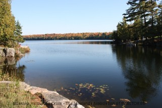 642 CLEAR LAKE RD, Arnstein Ontario, Canada Located on Hampel Lake