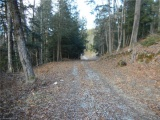 3 winter's bay estates road,