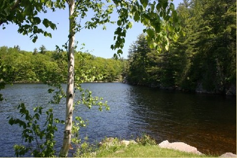 1579 ANSTRUTHER LAKE RD  2, North Kawartha Ontario, Canada