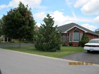114 hickory grv, Belleville Ontario, Canada