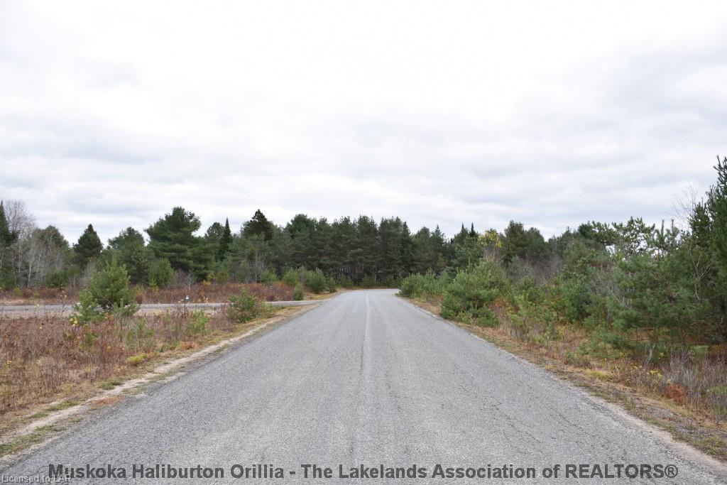 gabriel lane/centurion crescent, Novar Ontario, Canada