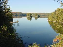 Free download program lake dillon fishing license gurubackup for Bartlett lake fishing report