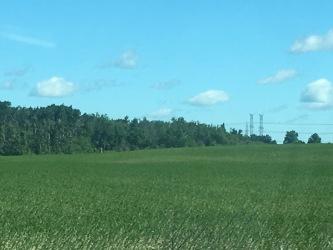 8376 Highway 89, Conn, Ontario (ID 135387)