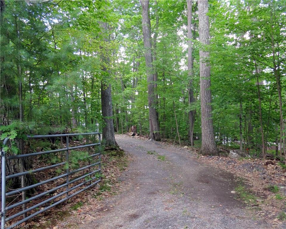1005 ALPHA Lane, Algonquin Highlands, Ontario (ID 218074)