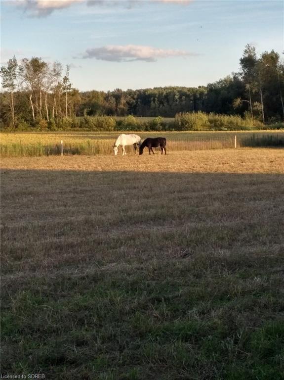 826396 Township #8 Road, Drumbo, Ontario (ID 30802637)