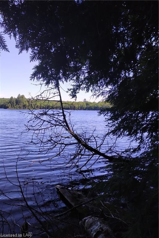 - MINNICOCK LAKE ., Haliburton, Ontario (ID 240523)