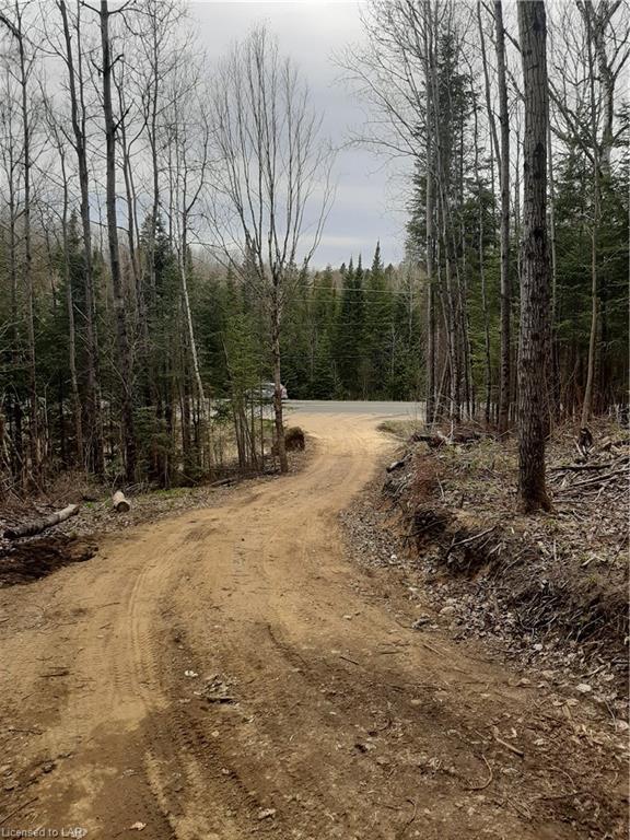 6587 ELEPHANT LAKE Road, Harcourt, Ontario (ID 260280)
