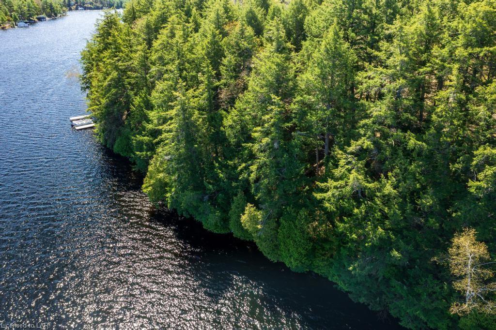 LOT 5 TONDERN ISLAND M69A Island, Muskoka Lakes, Ontario (ID 40114847)