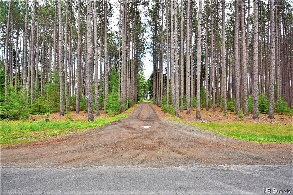 3000 690 Route, Sypher Cove, New Brunswick (ID NB040741)