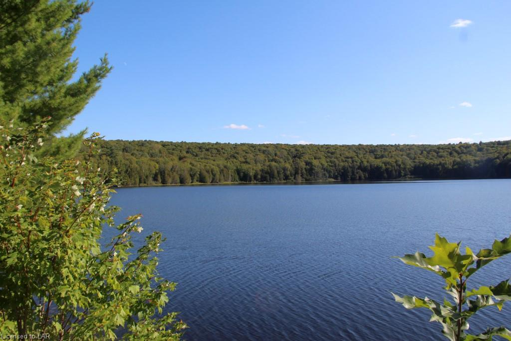 COLEMAN LAKE Road, Haliburton, Ontario (ID 40014593)