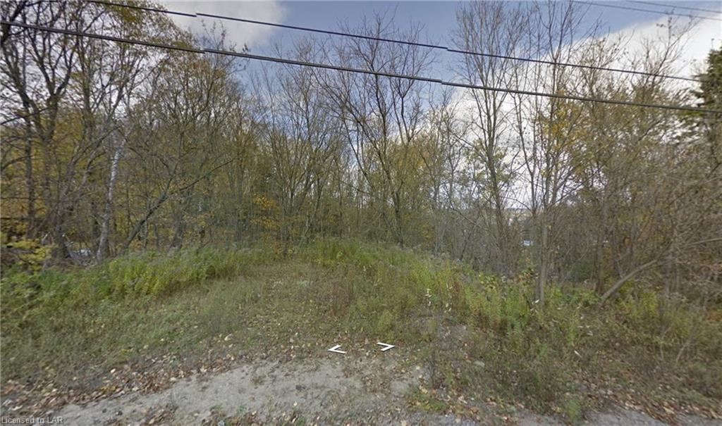 BEFORE 533 MOUNTAIN Street, Dysart, Ontario (ID 40020937)