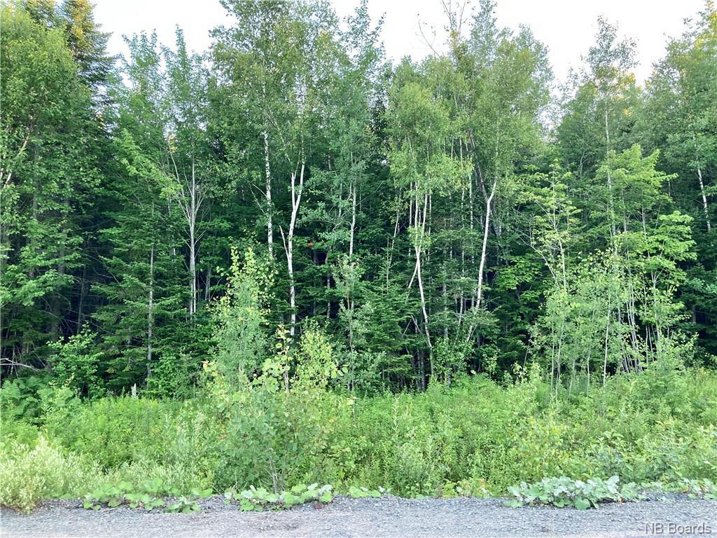 Lot 09-83 Garden Grove Street, Lincoln, New Brunswick (ID NB046346)