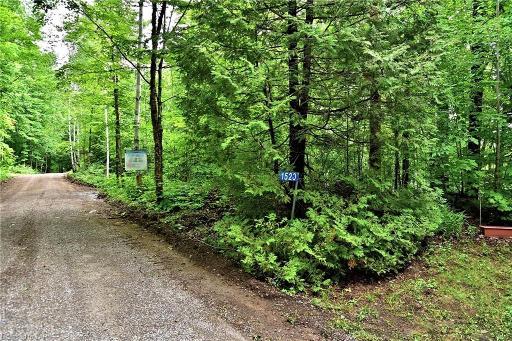 1520 BOB LAKE Road, Minden, Ontario (ID 40134650)