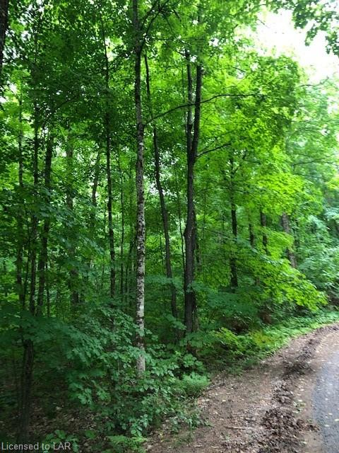 LOT 1 ANDERSON Road, Tory Hill, Ontario (ID 40138486)