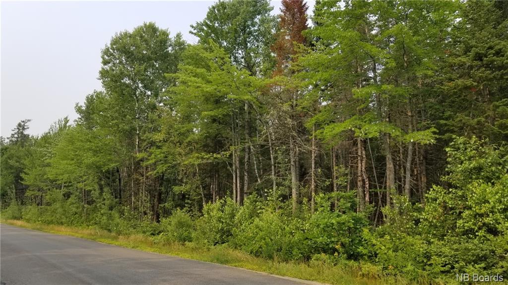 Lot 3-101 Sunpoke Road, Rusagonis, New Brunswick (ID NB061130)