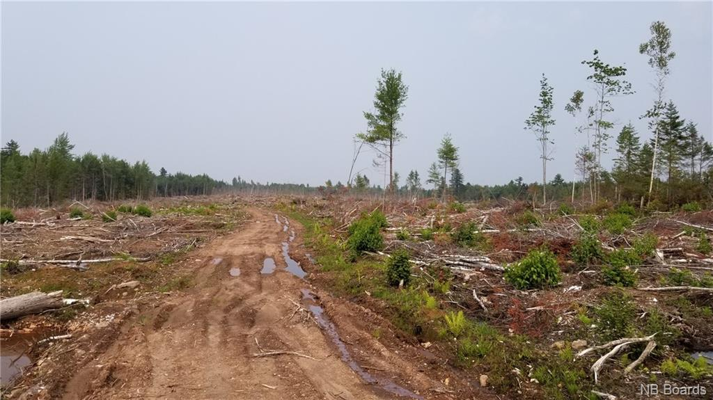 Lot 4-101 Sunpoke Road, Rusagonis, New Brunswick (ID NB061132)