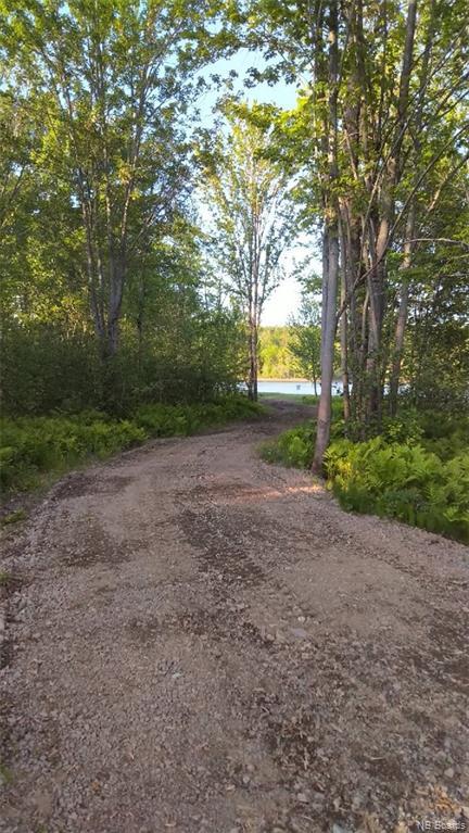 - Route 845, Kingston, New Brunswick (ID NB044598)