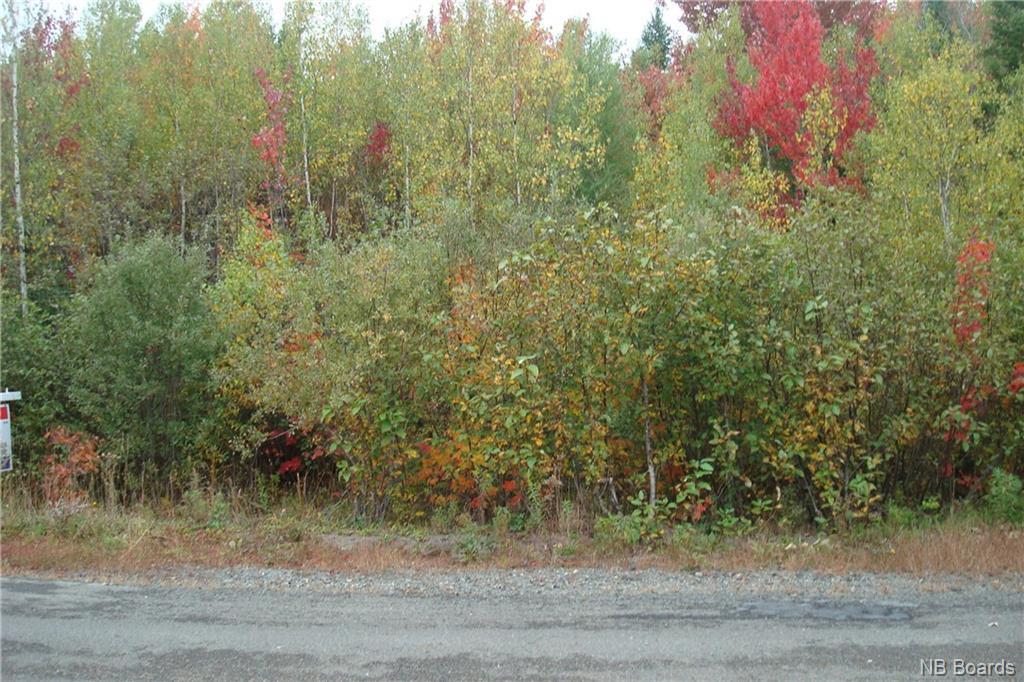 Lot 97-3 Leonard Street, Rusagonis, New Brunswick (ID NB040447)