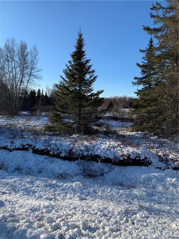 Lot 2019-3 3 Route, Brockway, New Brunswick (ID NB044459)
