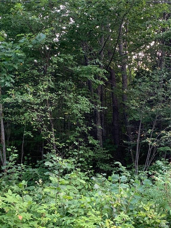 Lot Driftwood Drive, Kingsclear, New Brunswick (ID NB045394)