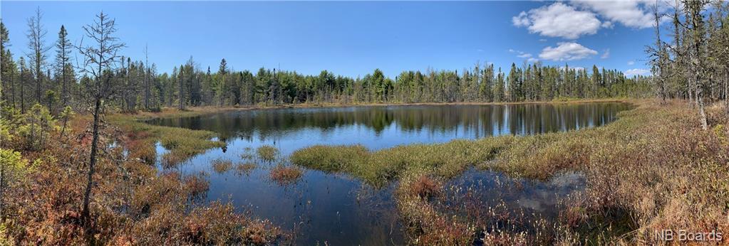 Vacant Lot Route 3, Brockway, New Brunswick (ID NB052518)