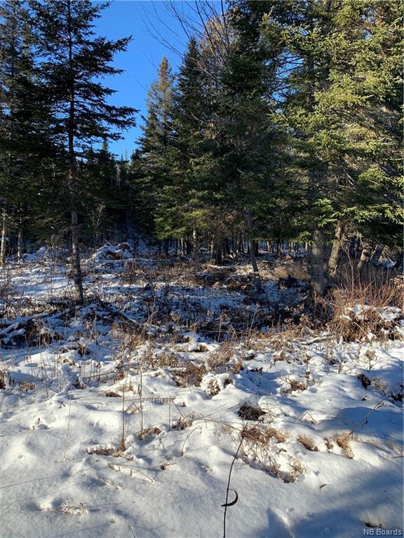 Lot 2019-3 Route 3, Brockway, New Brunswick (ID NB052522)