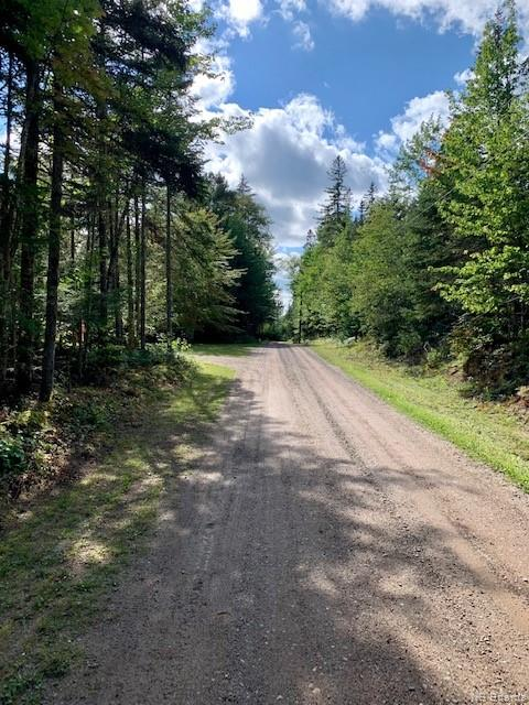 Lot 80-2 Plan 6817 Stephensons Landing Lane, Harvey, New Brunswick (ID NB062706)