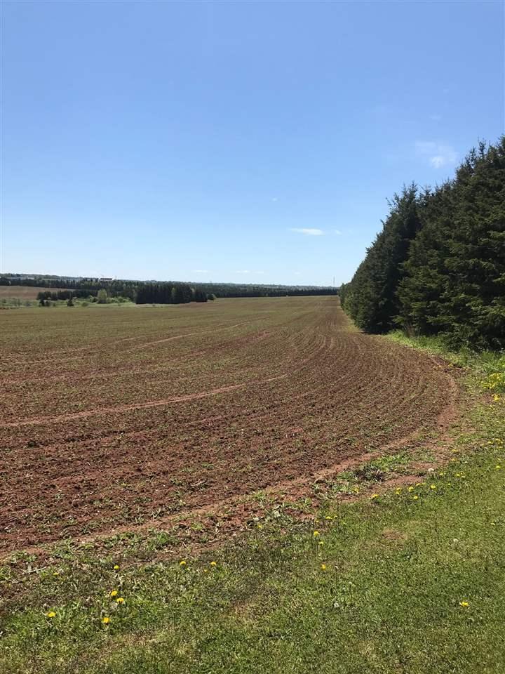 339 Malpeque Road, Charlottetown, Prince Edward Island (ID 201821902)