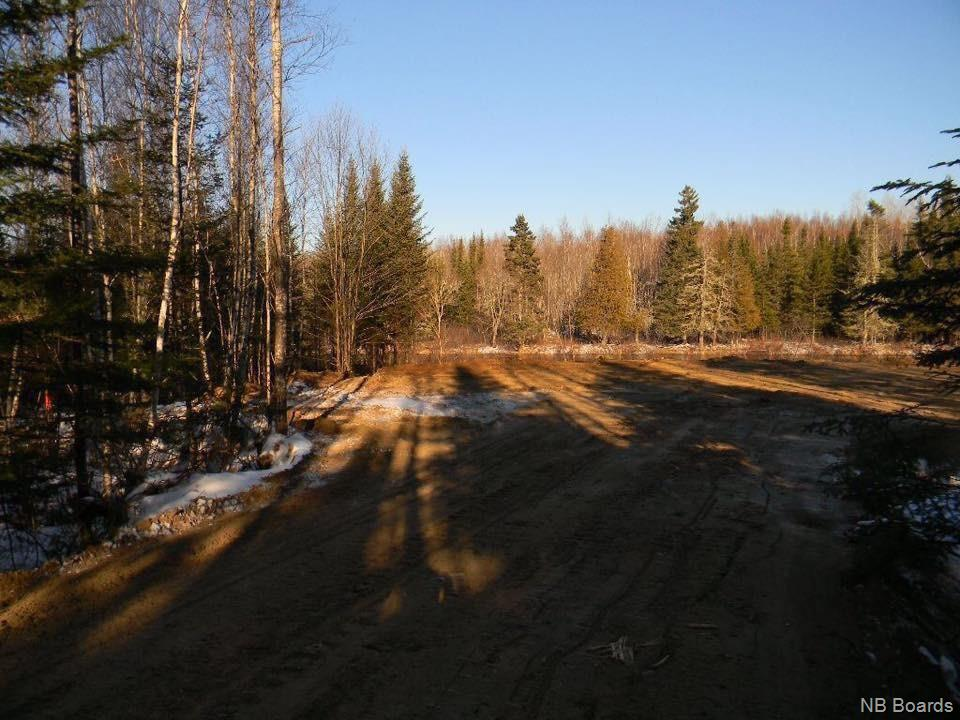 Lot Sarah's Lane, Harvey, New Brunswick (ID NB038920)