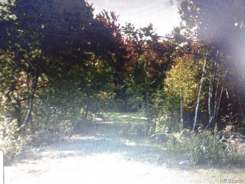 Lot Harvey Road, Mcadam, New Brunswick (ID NB045853)