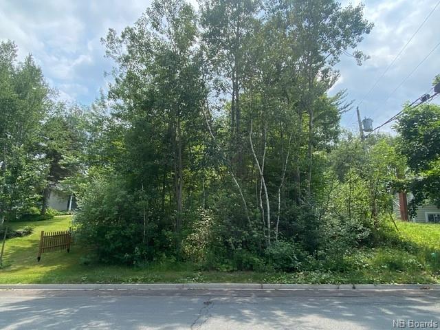 28 Flemming Road, Fredericton, New Brunswick (ID NB063230)
