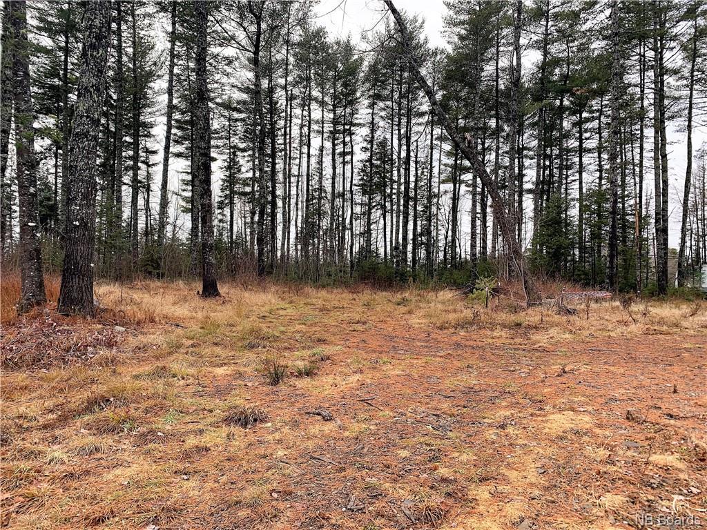 1495 Route 101, Nasonworth/charters Settlement, New Brunswick (ID NB059217)