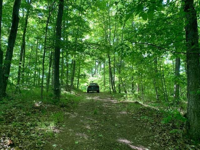 14 Mill Bay Lane, South Frontenac, Ontario (ID K21003532)