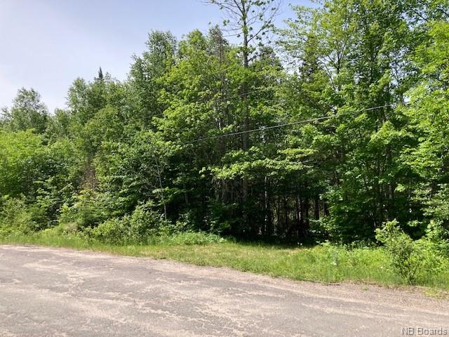 Lot 93-2 Pokiok Settlement Road (ID NB059782)