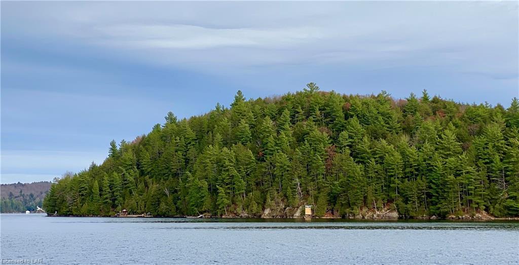 LONG Island, Dorset, Ontario (ID 277848)