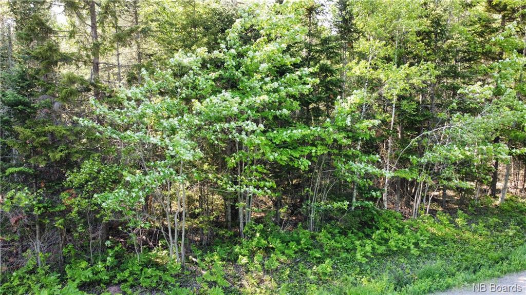 LOT 3 Wildwood Way, Burton, New Brunswick (ID NB045580)