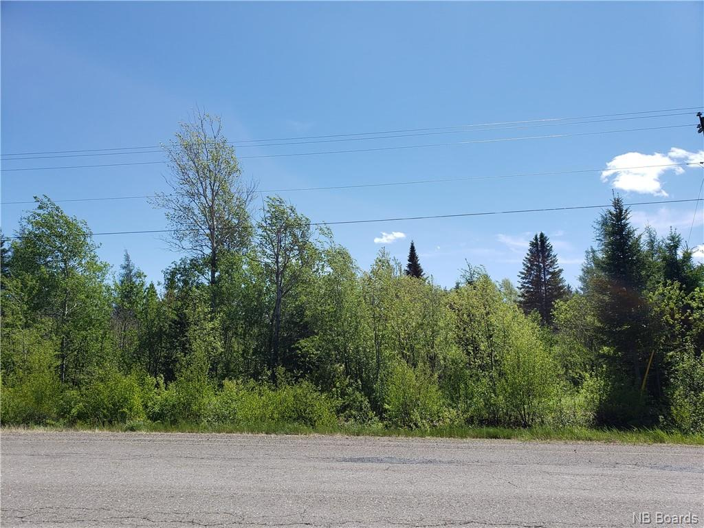 Lot Route 104, Middle Hainesville, New Brunswick (ID NB058826)