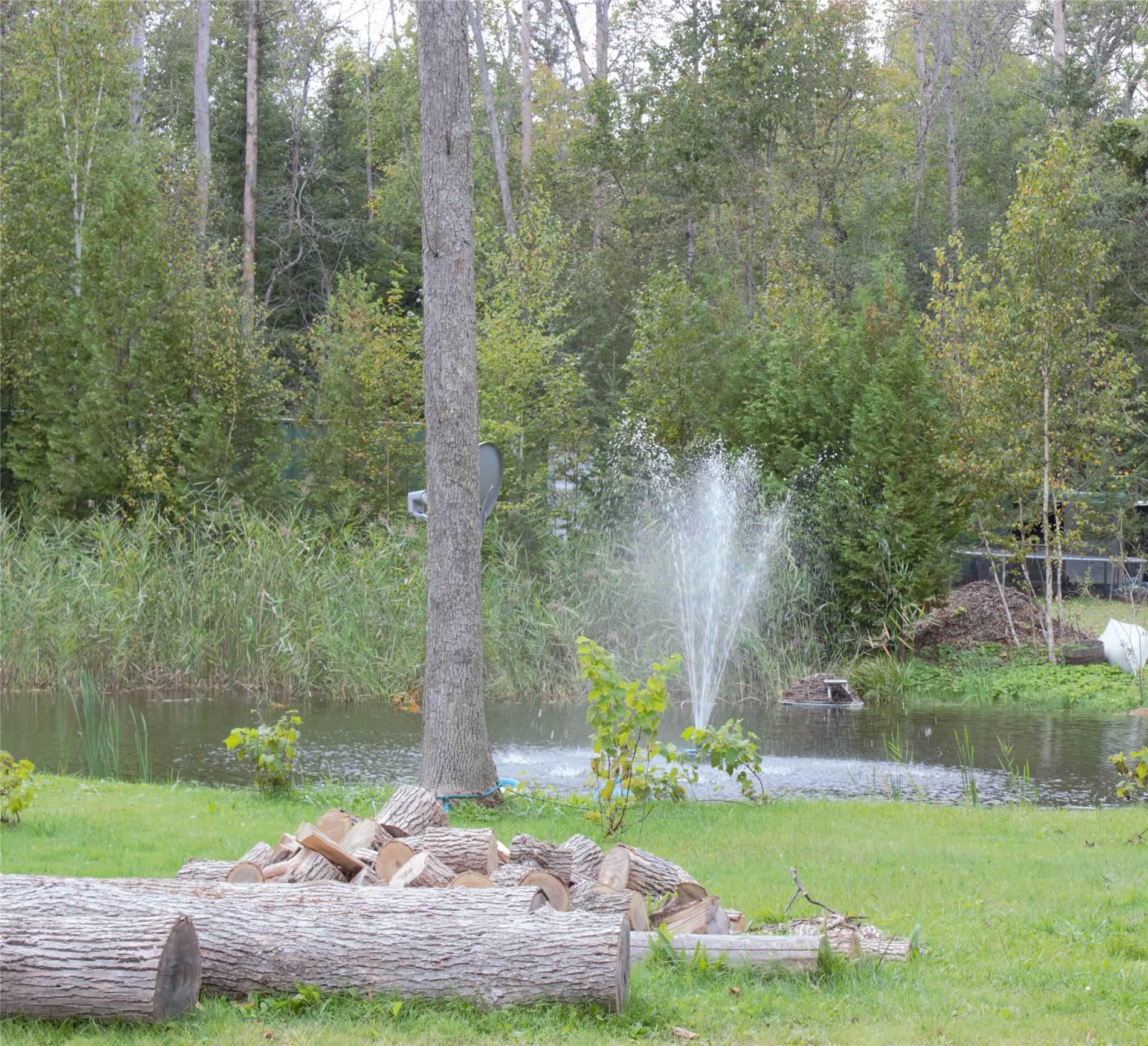 24261 Weir's Sdrd, Georgina, Ontario (ID N5392005)