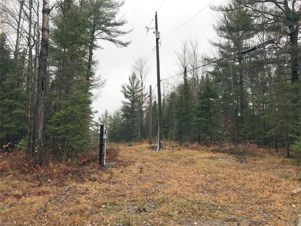1337 GELERT Road, Minden, Ontario (ID 230129)