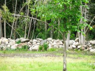 22 SPRINGHOME RD, Oro-medonte Township, Ontario (ID 091242)